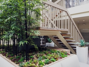 After: The effect of interior plantscaping is stunning.
