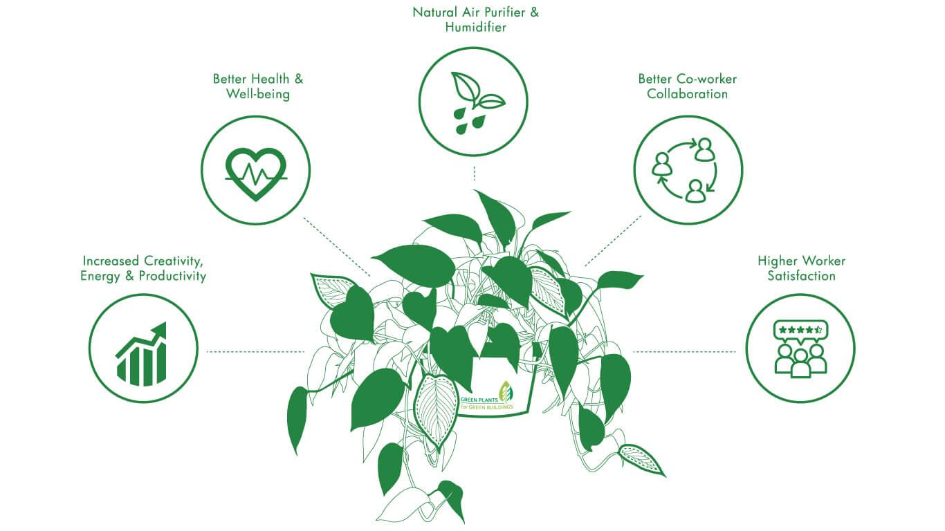 Living_Plant-Benefitsgpgb-web