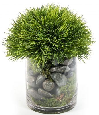 Grass in Round Glass