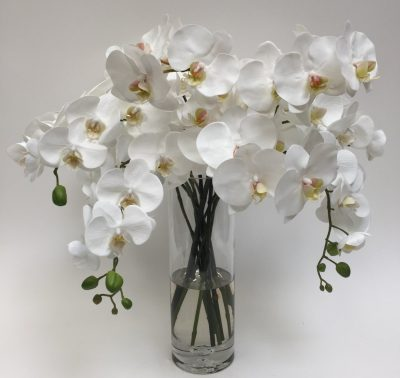 White Orchid Bouquet in Glass Vase
