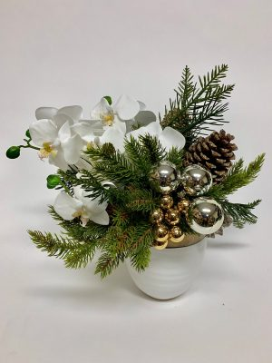 White Orchid and Pine in White