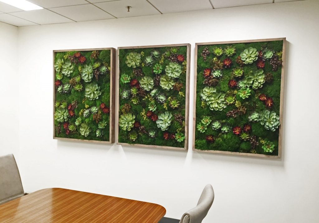 3 panel moss wall designed for corporate client