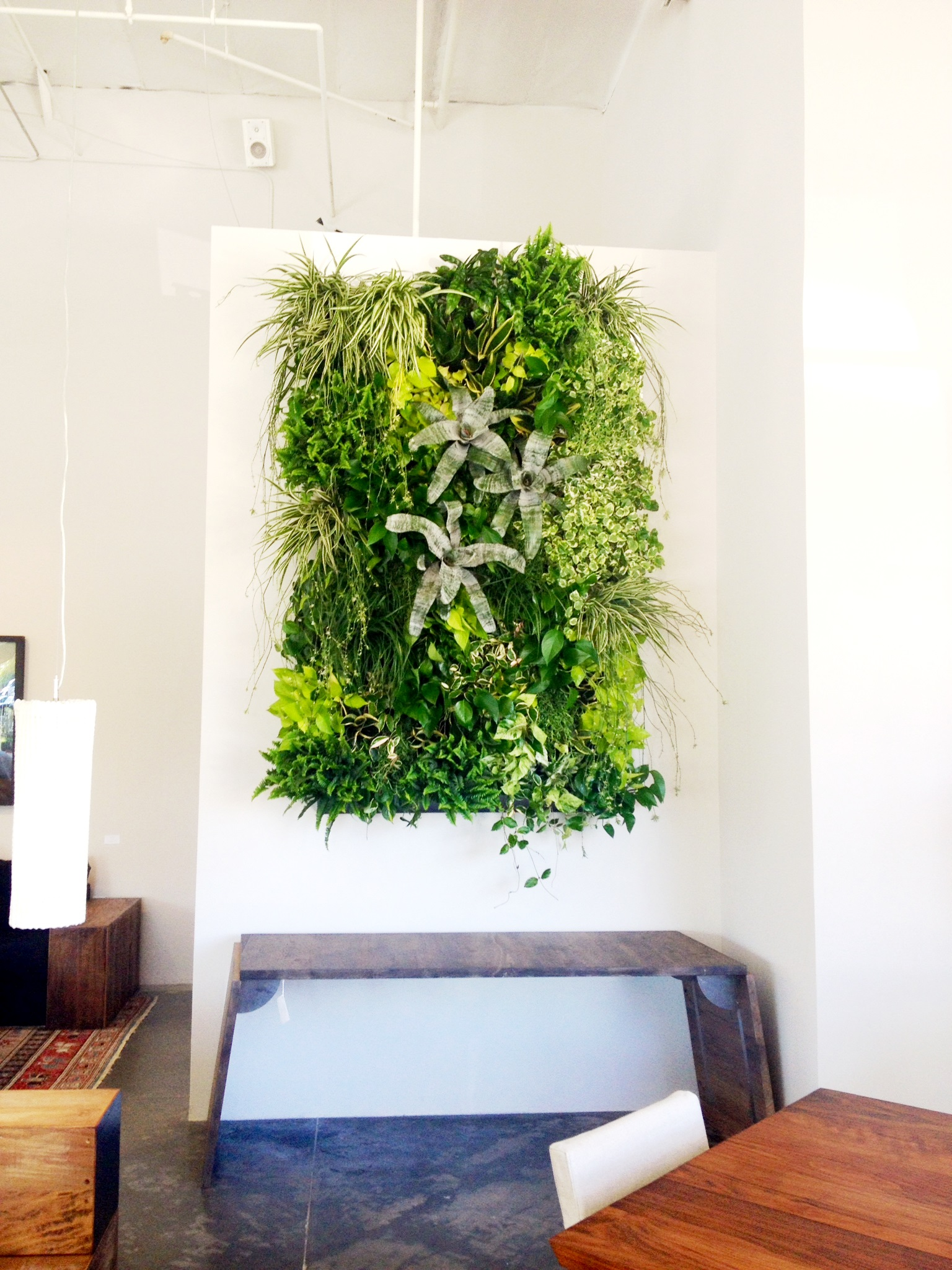 Environment Furtniture Showroom
