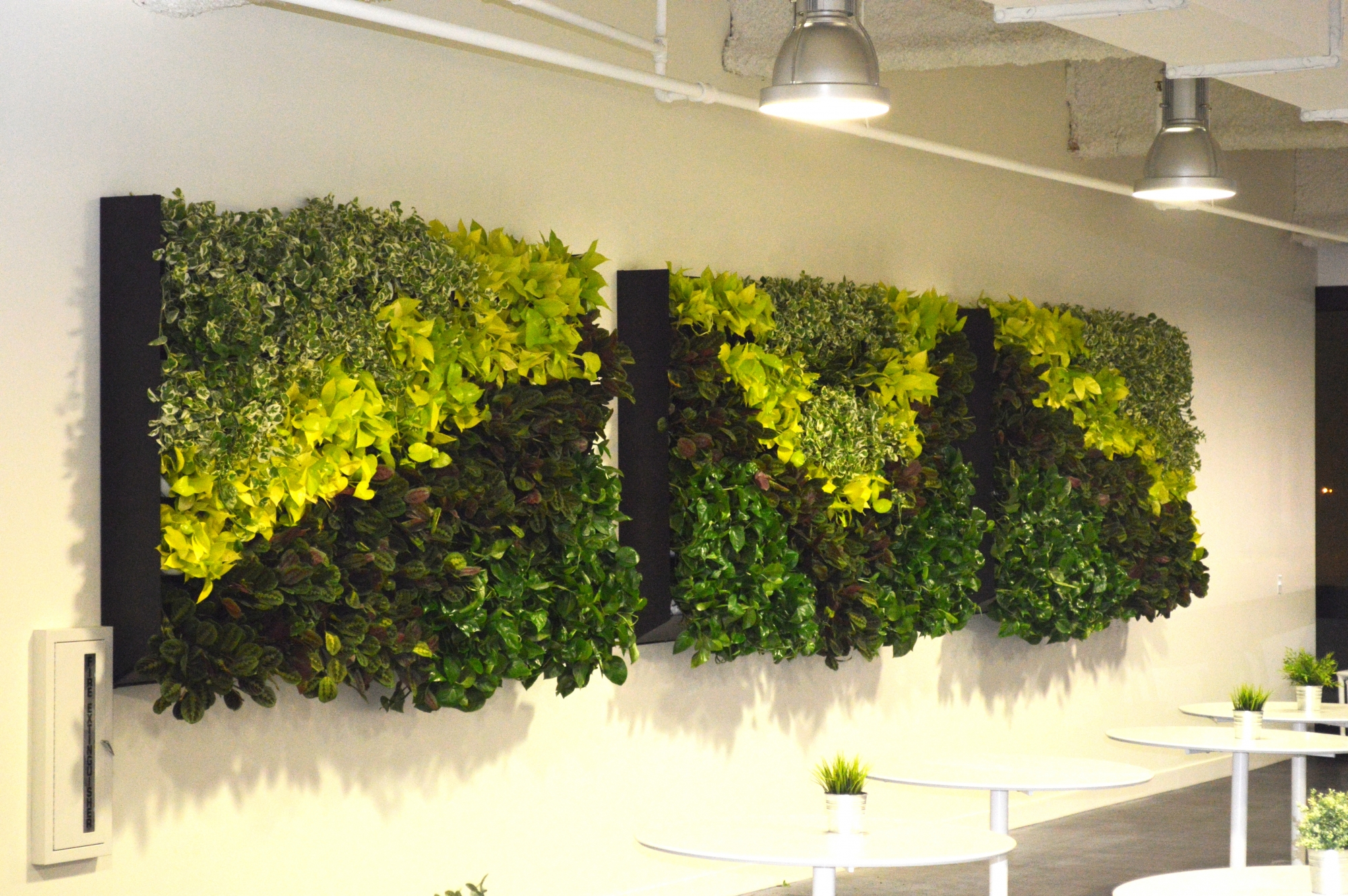 Houzz Lunch Room