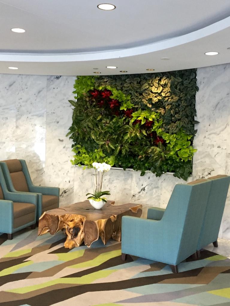 http://plantscapers.com/services/