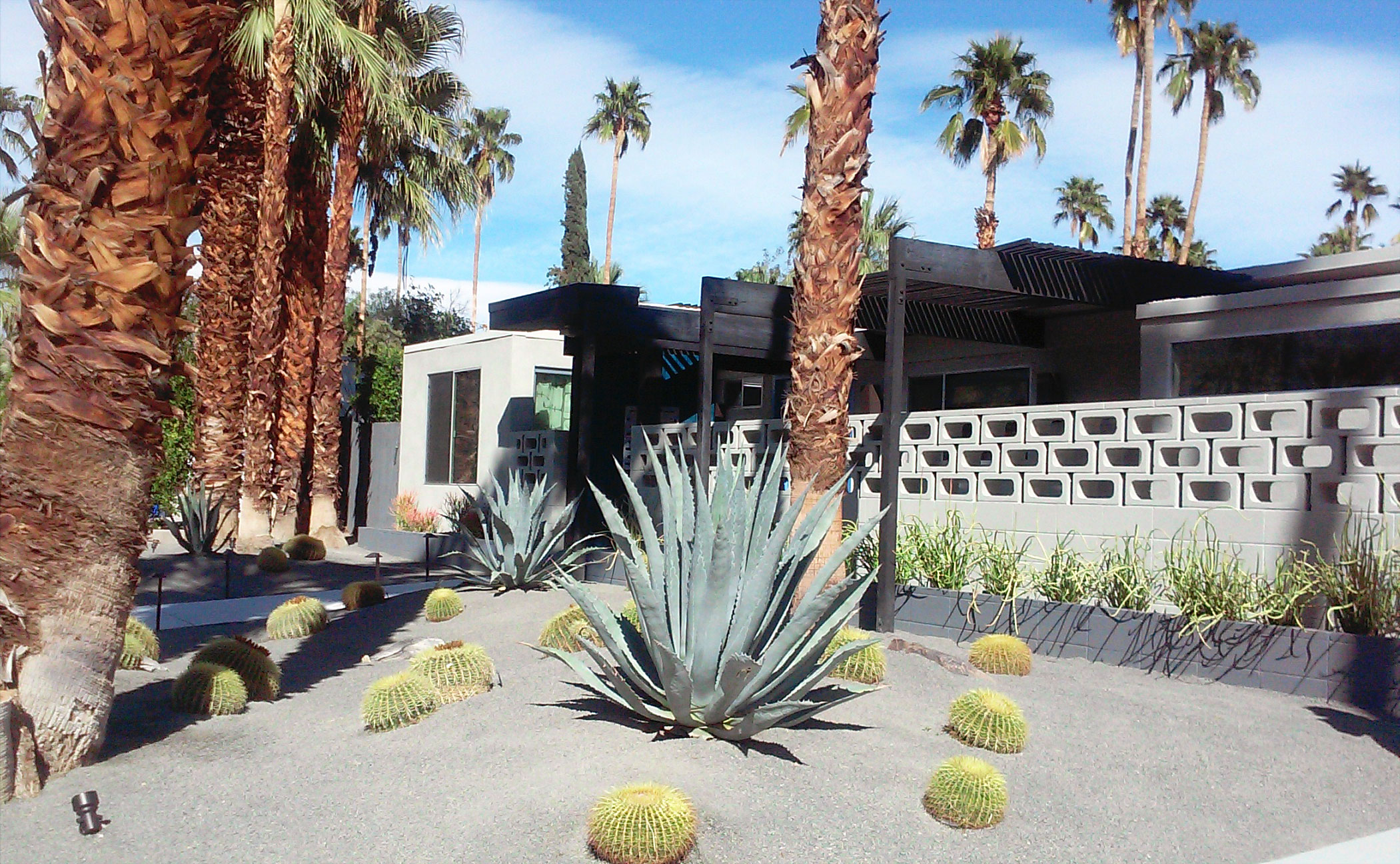 Desert Landscapes On The Modernism Week Garden Tour Plantscapers