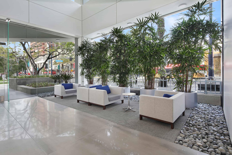 Interior designs come alive when the plants arrive.