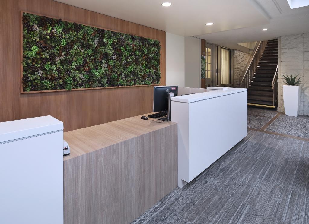 moss sedum wall created for Medical Building Lobby