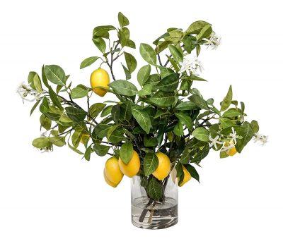 Lemon Branches in Glass Vase