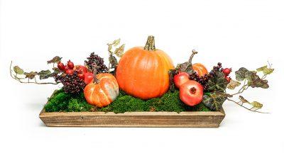 Pumpkin Centerpiece in Wood Rectangle