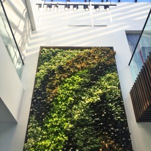 AIS-Living Wall Lobby with watering system