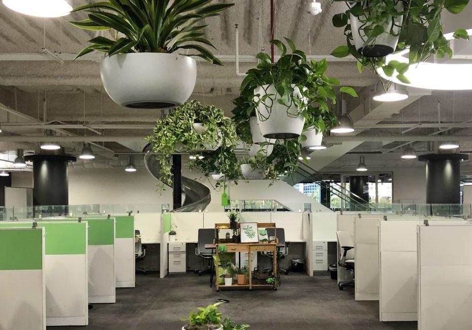 Corporate, Corporate Headquarters Irvine-Julie Farrow