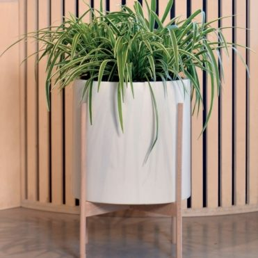 pot on stand